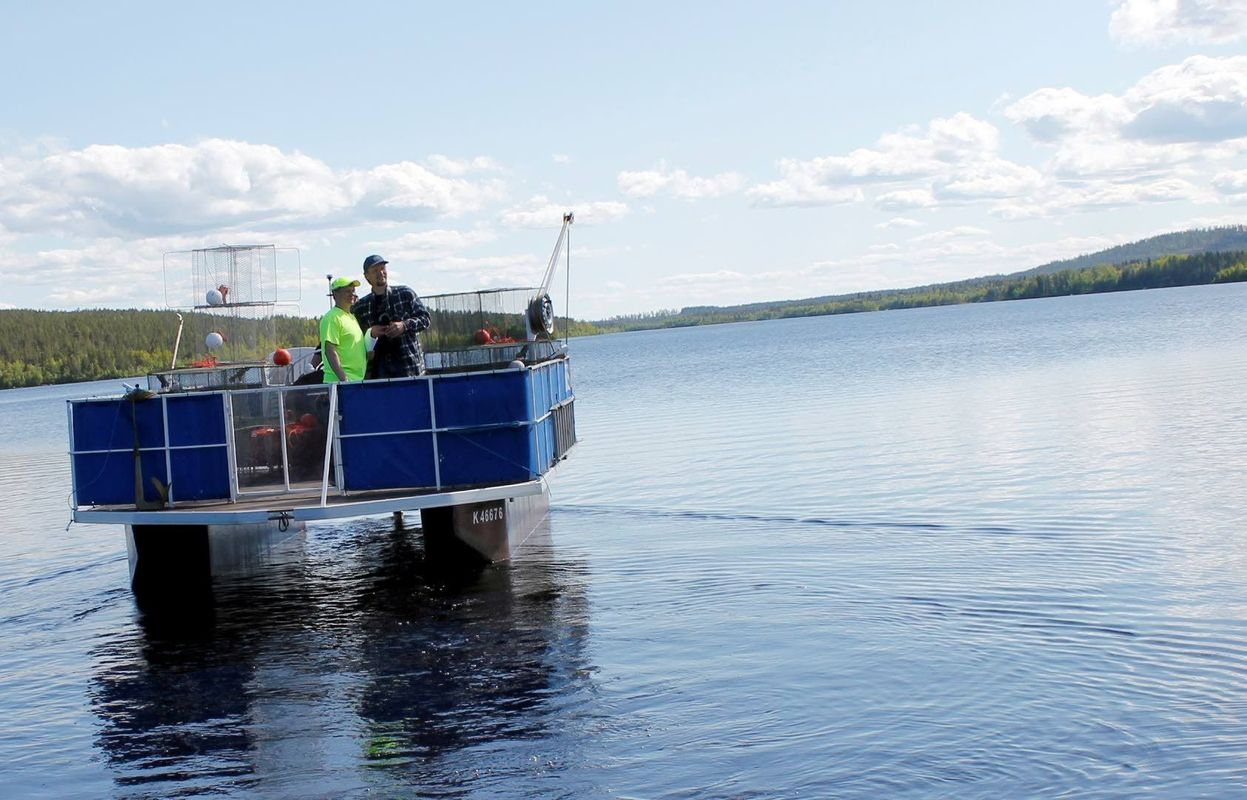 At Pöyliöjärvi you can truly say, that you can catch a trout in the midle of the city.